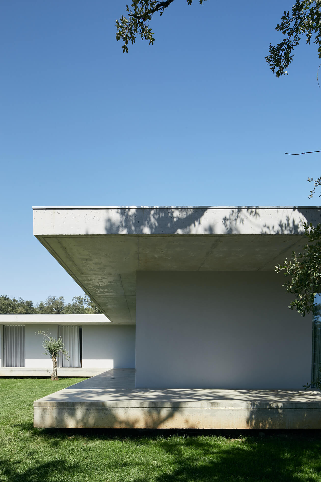Casa Fanu
