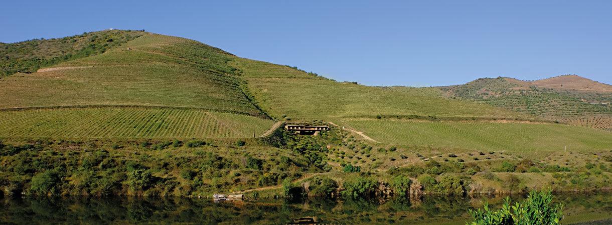 Best Of Wine Tourism Awards distingue a Casa do Rio – Quinta do Vallado