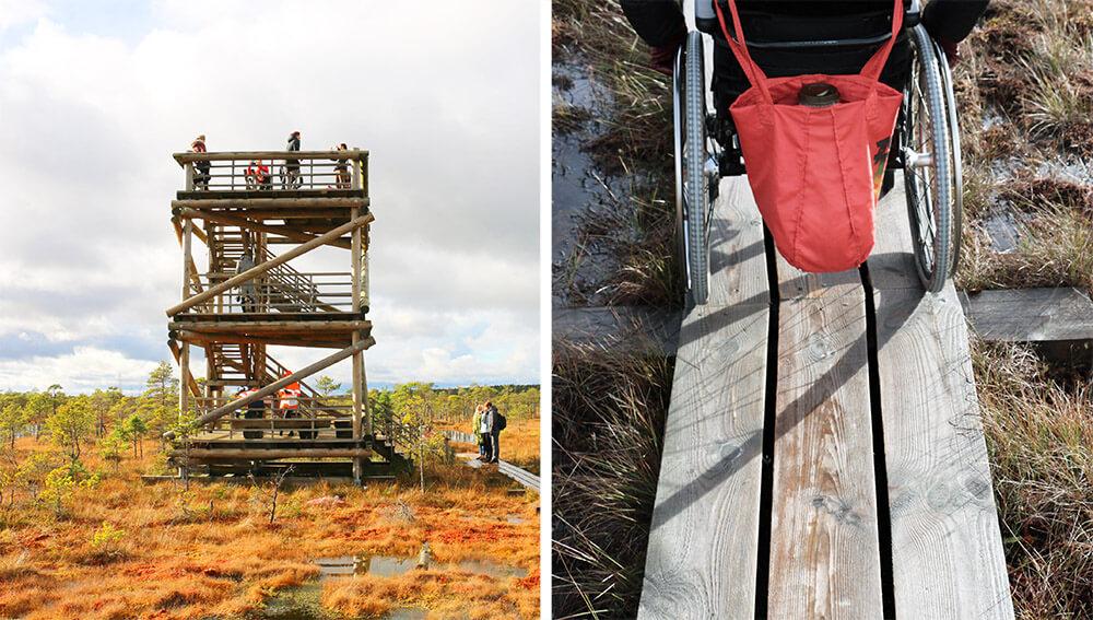 Kemeri National Park Observation Tower