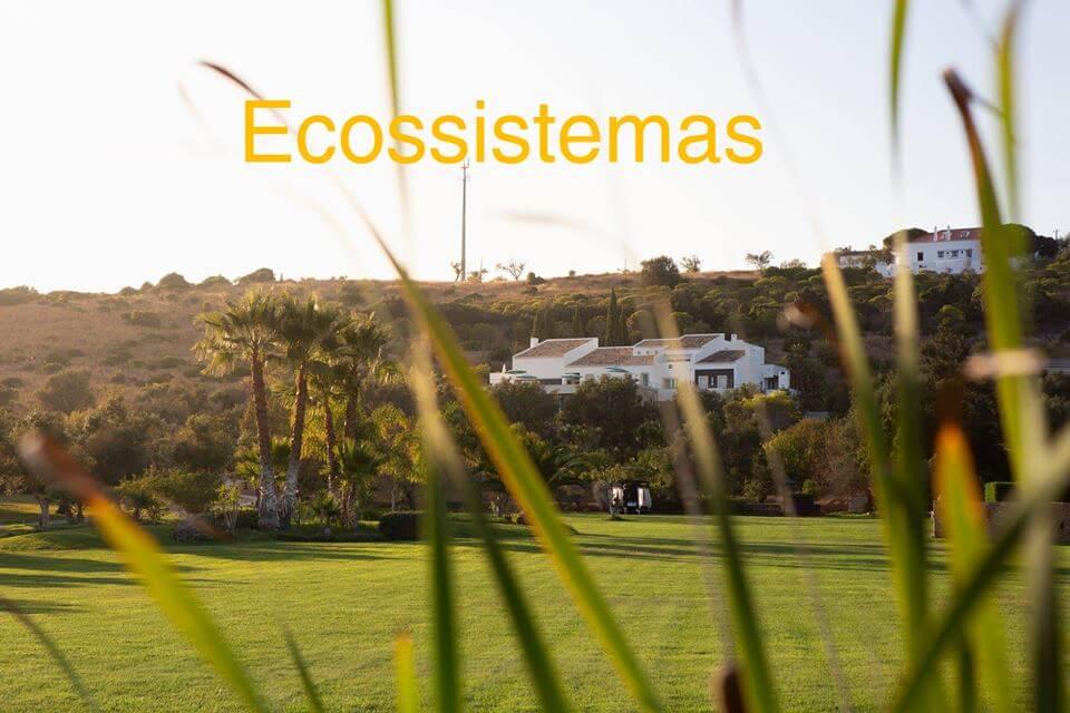 Ecossistemas Projecto, construção e manutenção de áreas Verdes, sistemas de rega