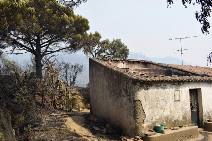Arquitetos voluntários ajudam a reconstruir casas em Monchique