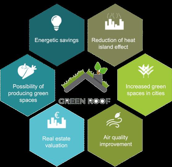 ANCV – Associação Nacional de Coberturas Verdes