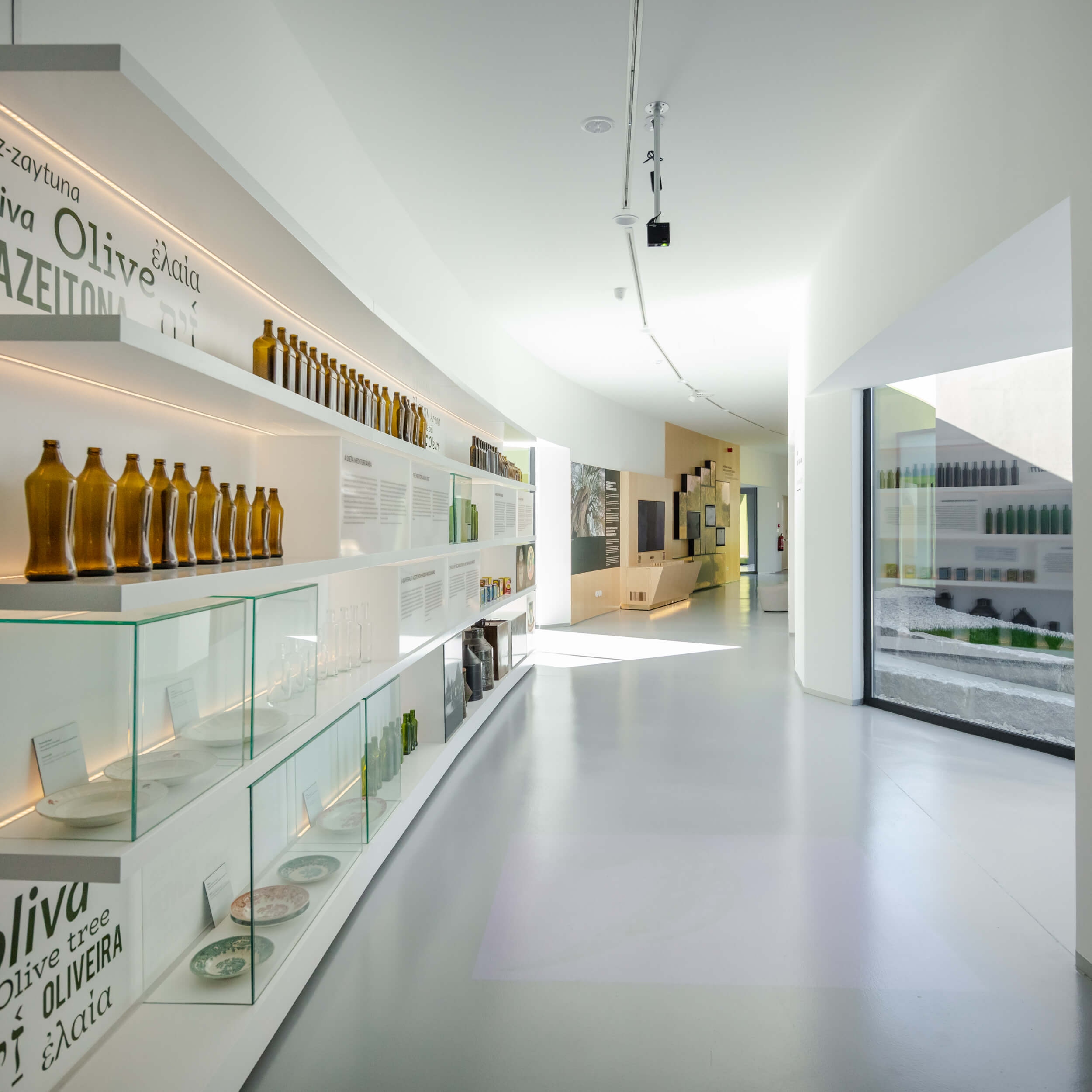 Museu do Azeite