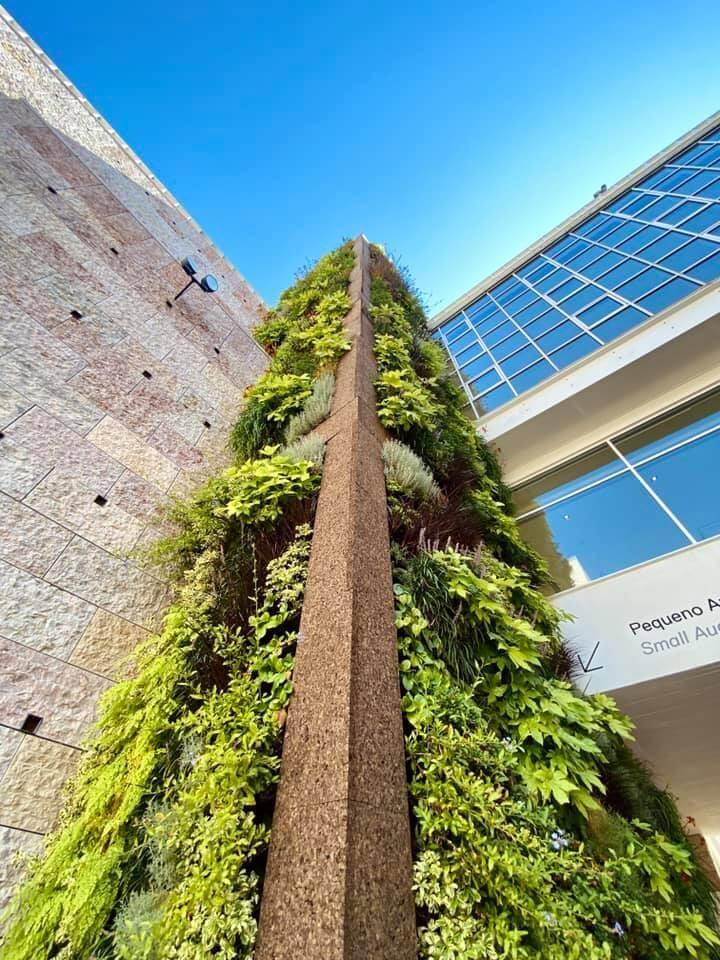 Arquiteto Francisco Caldeira Cabral projeta jardim vertical no CCB