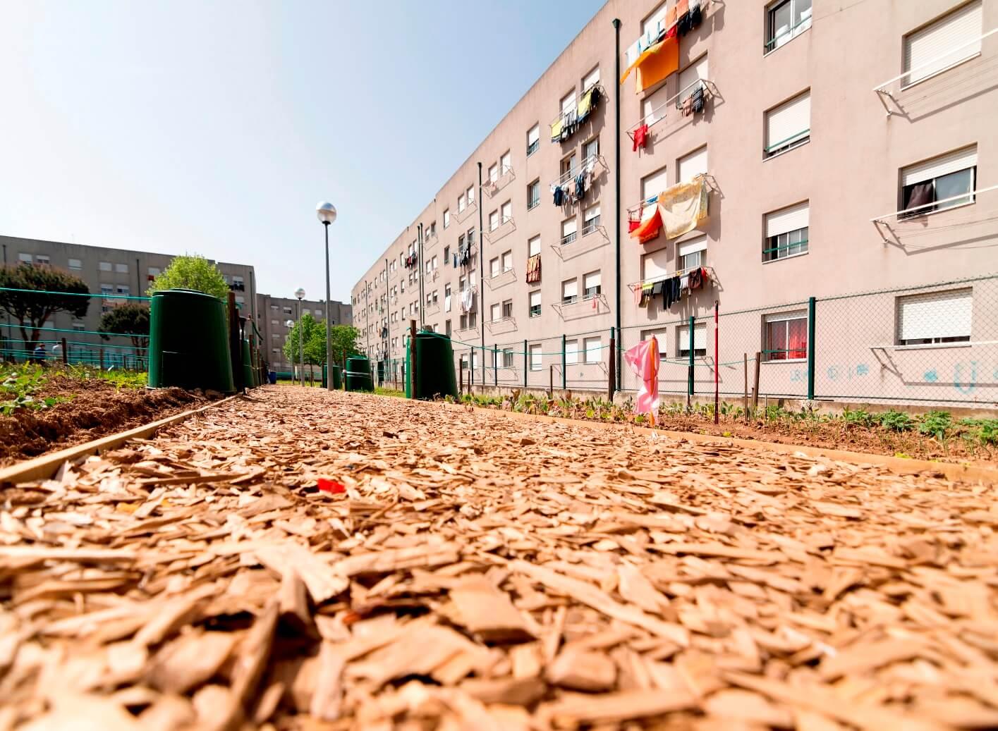 Matosinhos investe na requalificação de 500 habitações