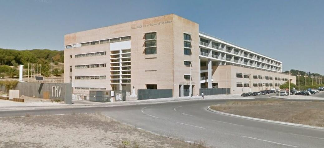 Reabilitação da Faculdade de Medicina Veterinária da Universidade de Lisboa