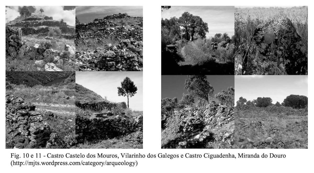 Meio ambiente e arquitectura da paisagem