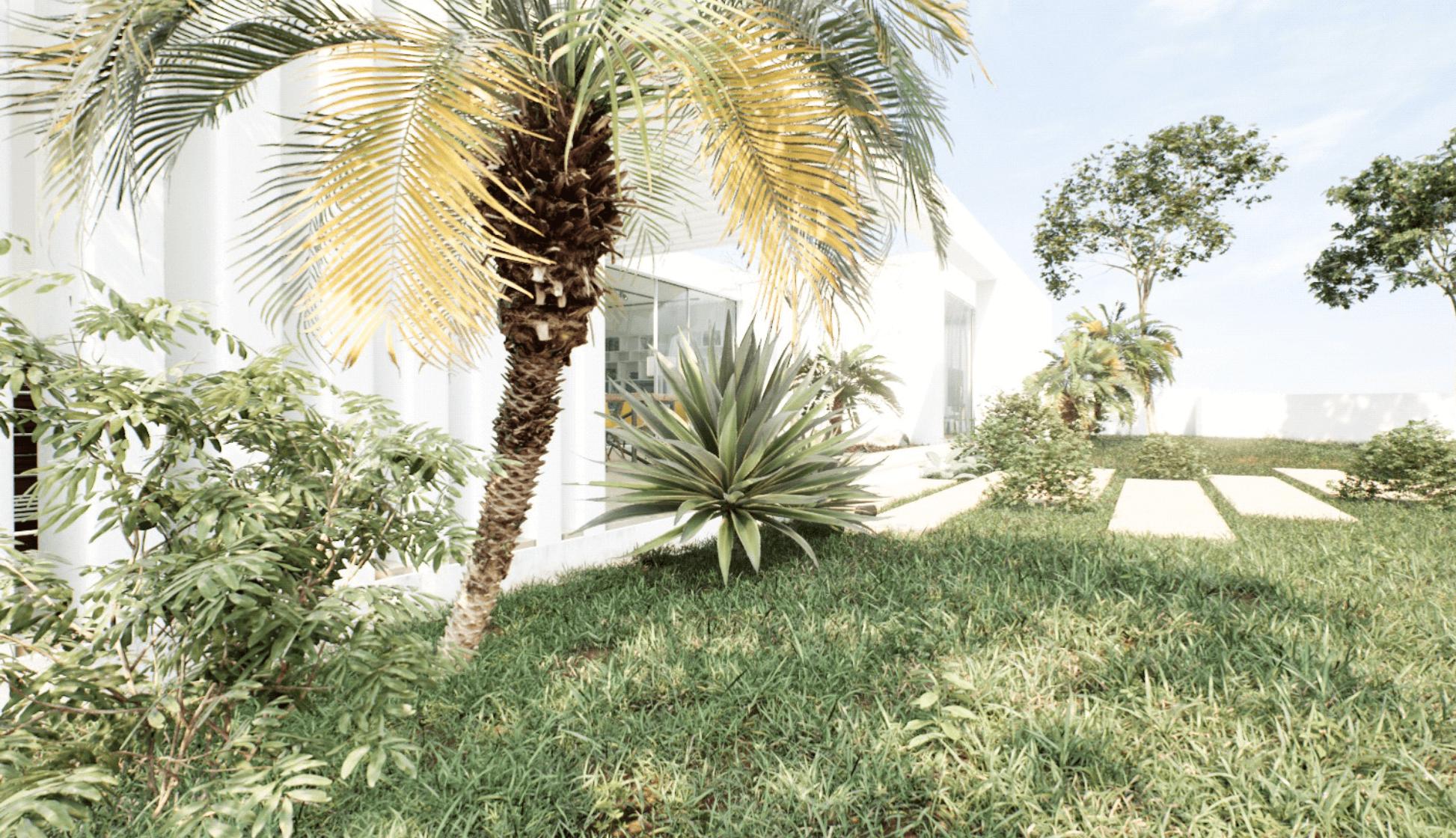 Imagem 2 - Estudo exterior:vegetação (patio exterior)